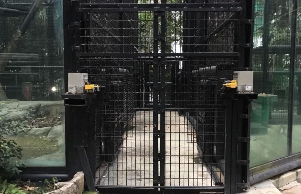 發現不一樣的香港系列|看見「動植物公園」讀書會(G-N場)