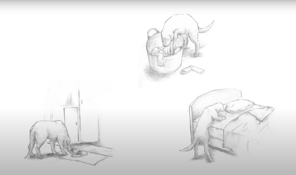 【生命教育讀書會|為給遺棄的小狗小貓設計領養海報】