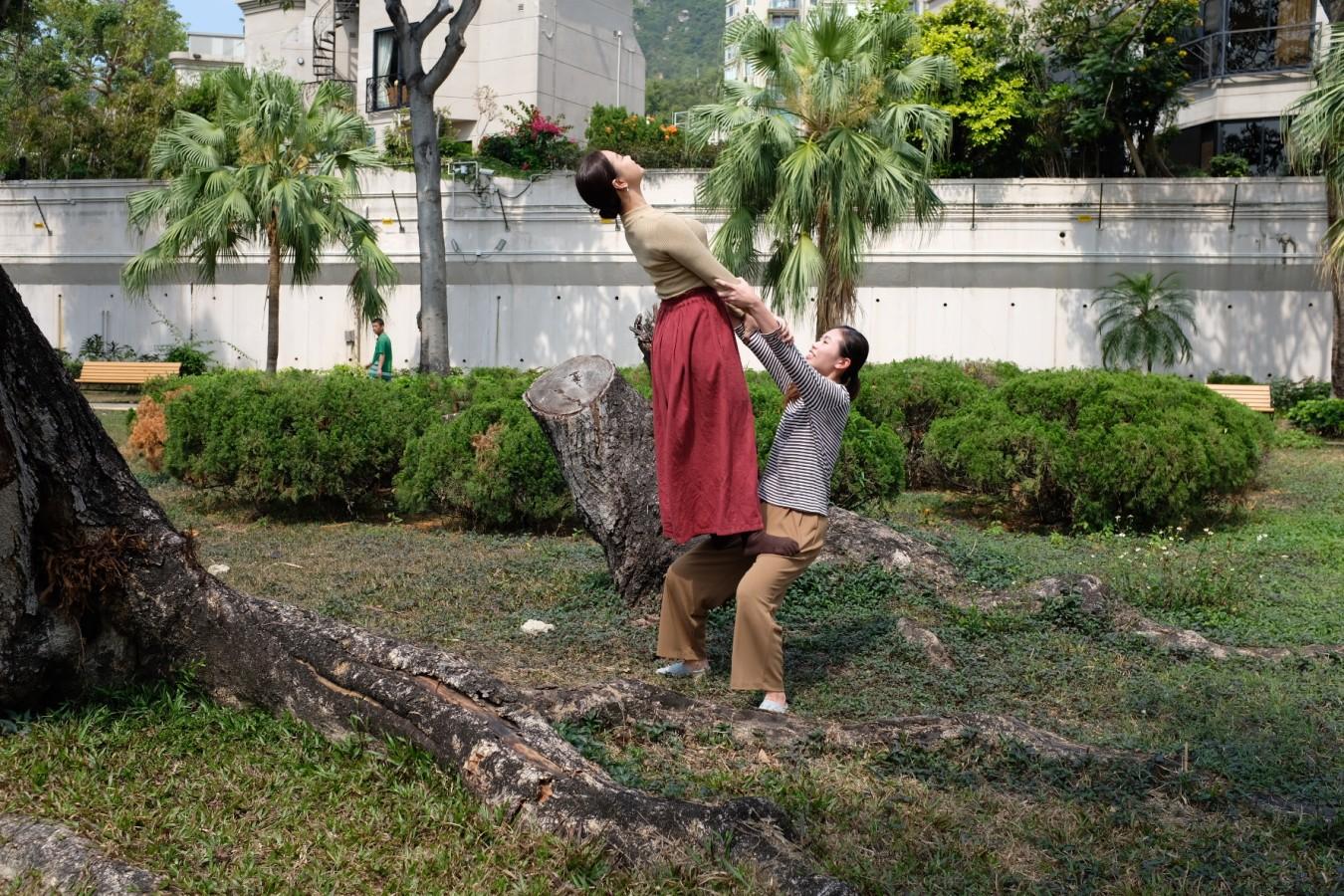 身體遊樂場 | 思考‧身體系列:小城大樹 (適合小一至小四學生)